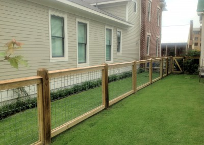 Living Fence